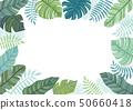 남국의 식물 프레임. 50660418