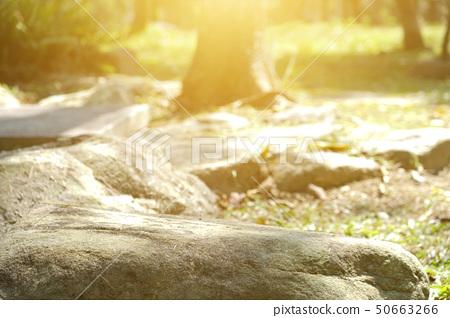 像公園的大石和早期的同伴陽光,以及作家的霍普。 50663266