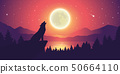 wolf is howling to the moon by the lake at starry sky 50664110