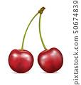 Cherry fruits on white 50674839