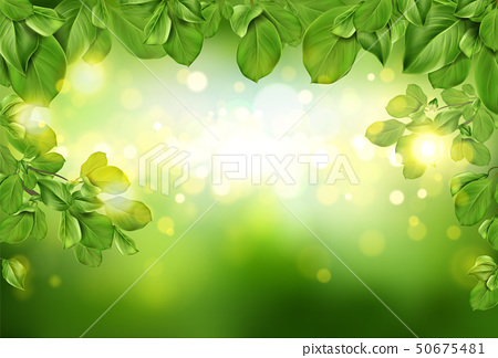 Tree leaves border on green defocused background 50675481