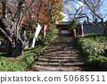 秋天的Dairyu-ji寺(福岛县,会津若松市) 50685511