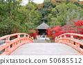秋天Shiromizu Amidado(福岛县,磐城市) 50685512