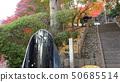 温泉神社(福岛县,磐城市汤本) 50685514