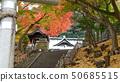 温泉神社(福岛县,磐城市汤本) 50685515