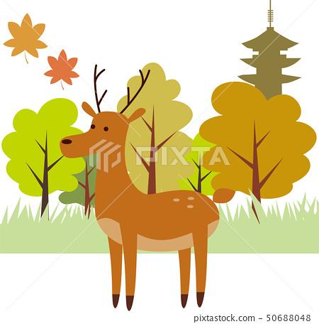 사슴 나라 공원 50688048