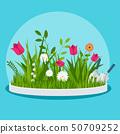 Flower bed in the front garden 50709252