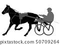 安全带 马儿 赛马骑师 50709264