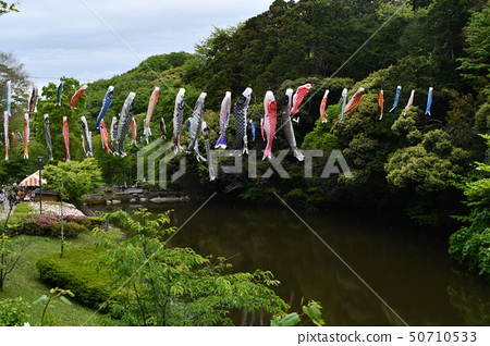 鯉魚飄帶Waku Waku花節 50710533