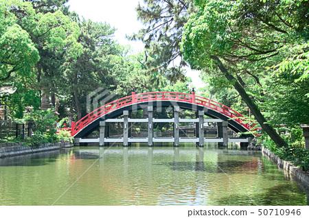 Sumiyoshi Taisha Bridge 50710946