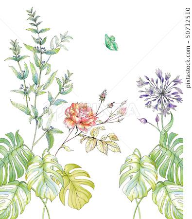 美麗的水彩玫瑰花和牡丹花 50712510