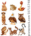 Set of wild animals 50715748