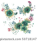 Set of floral succulents compositions in hand draw 50718147