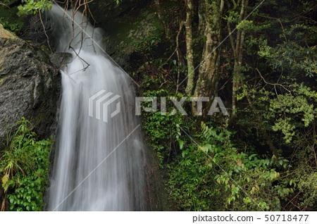 在台灣的新竹五峰,溪流與瀑布 50718477