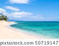 하와이 오아후 섬 노스 쇼어 선셋 비치 50719147