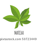 Matcha icon in flat style isolated on white. 50723449