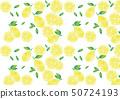 수채화 풍 잎 대해서 레몬과 둥글게 썬 레몬과 나뭇잎 임의 패턴 50724193