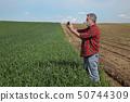 小麦 原野 运动场 50744309