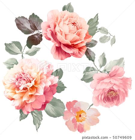 美麗的水彩玫瑰花和牡丹花 50749609