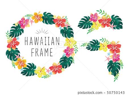 水彩木槿夏威夷框架集 50750143
