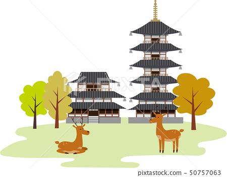 奈良觀光旅遊 50757063