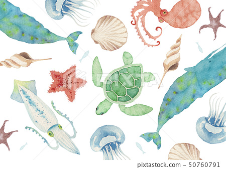 Summer background textile sea life watercolor illustration 50760791