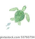 夏天海海龜水彩例證 50760794