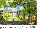 신록의 히코 산 신궁 참배 (구리 도리 - 히코 산 신궁 사이) _ 후쿠오카 현 다가와 군 소 에다 마치 50761705