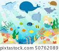 Illustration of cute sea creatures 50762089