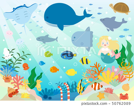 可愛的海洋生物的插圖 50762089