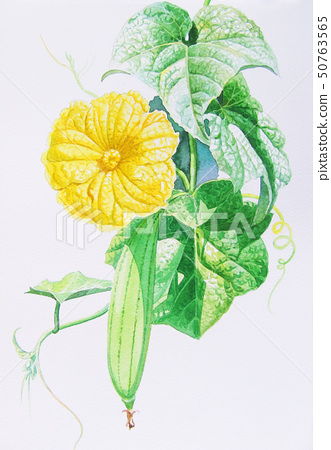 Painting original realistic yellow flower of 50763565