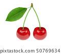 Cherry. 3d rendering illustration 50769634