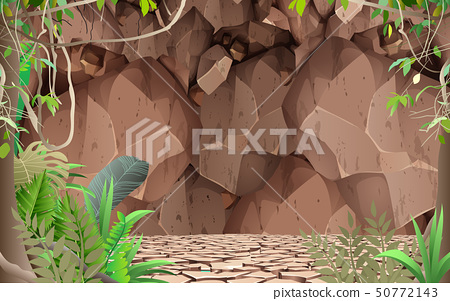 landscape of dry ground in the jungle 50772143