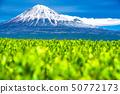 """ทิวทัศน์ """"จังหวัดชิซุโอกะ"""" ของภูเขาไฟฟูจิและไร่ชา 50772173"""