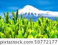 """ทิวทัศน์ """"จังหวัดชิซุโอกะ"""" ของภูเขาไฟฟูจิและไร่ชา 50772177"""