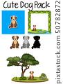 A pack of cute dog 50782872