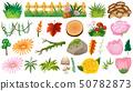 Set of ornamental plants 50782873