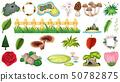 Set of ornamental plants 50782875
