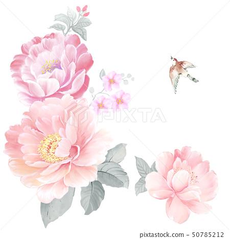 아름다운 수채화 장미와 작약 꽃 50785212