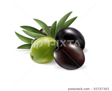 Olives and leaves isolated on transparent background. Photo-realistic vector, 3d 50787365