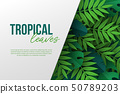 Banner with exotic jungle tropical palm leaves. 50789203