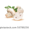 champignon mushrooms isolated on white background. Quality realistic vector, 3d 50789256