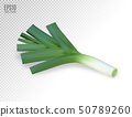 Fresh leek on a white background. Photo realistic vector, 3d 50789260