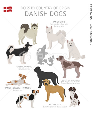 Dogs by country of origin. Danish dog breeds. 50793833