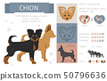 Designer, crossbreed, hybrid mix dogs collection 50796636