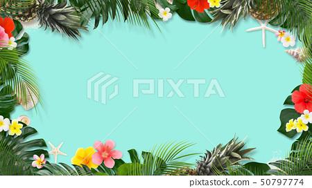 背景 - 海 - 夏 - 龜背竹 - 雞蛋花 - 芙蓉 - 菠蘿 - 熱帶 - 框架 50797774
