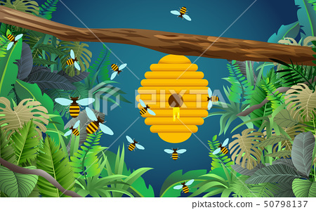 bee and honeycomb on tree branch in the jungle 50798137