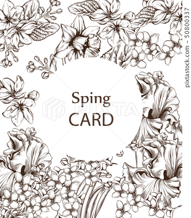 Vintage card with flowers Vector lineart. 50800337