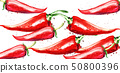 Chili Vector watercolor pattern. Menu restaurant 50800396