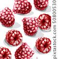 Raspberry Vector watercolor. Juicy banner summer 50800530